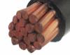 PVC coated copper